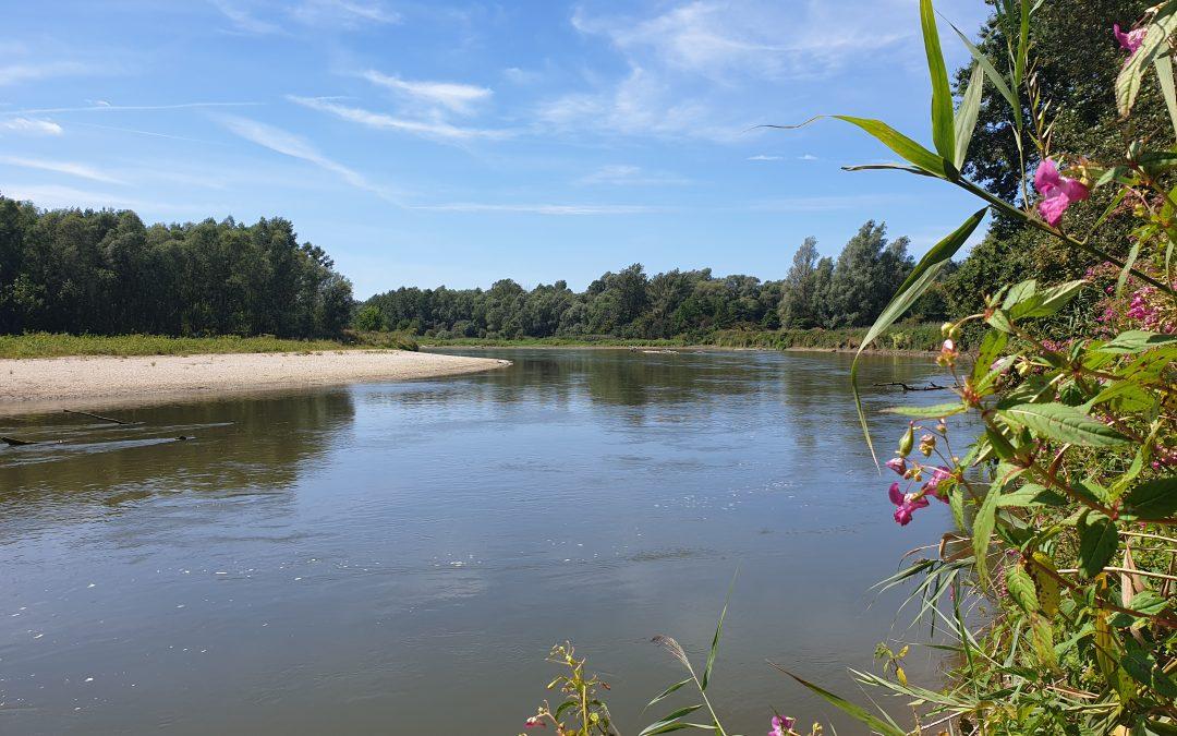 The Mura River in Slovenia - photo by A. Koren.